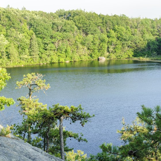 Things to Do at Lake Ariel in the Poconos