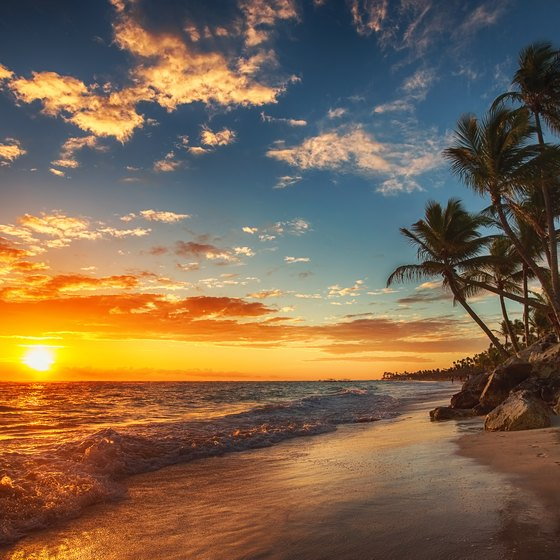 Tropical Beach And Peaceful Ocean: Tropical Ocean Facts