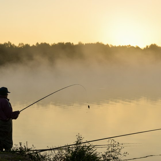 Michigan Campgrounds with Fishing
