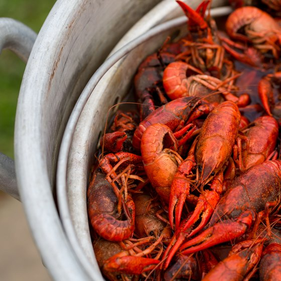 Biloxi Crawfish Festival