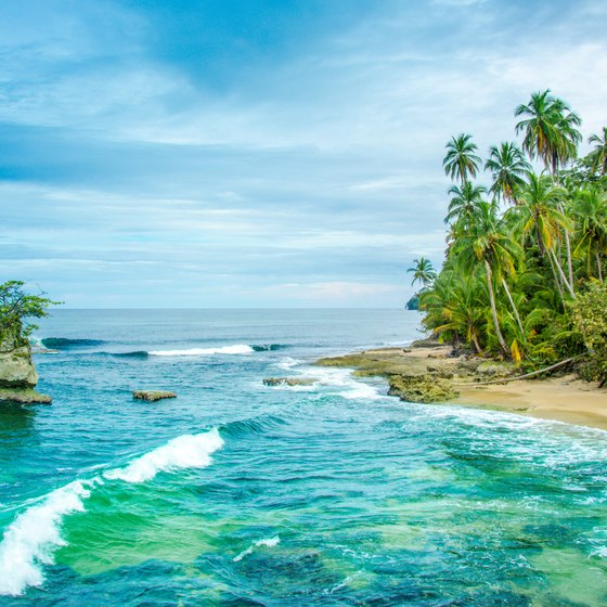 Helpful Phone Numbers & Travel to Costa Rica