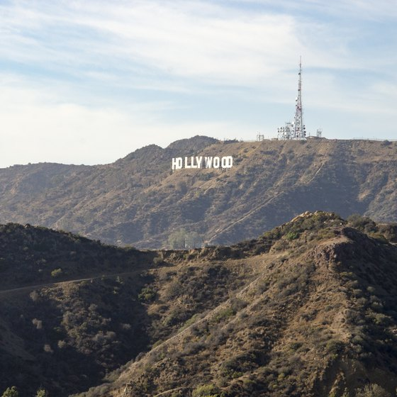 Hollywood Murder Tours
