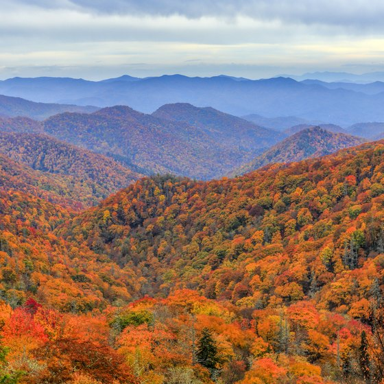Places to Go That Are Close to Knoxville, Tennessee