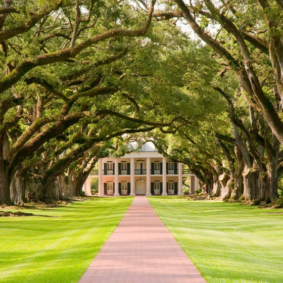 Virginia Plantation Tours