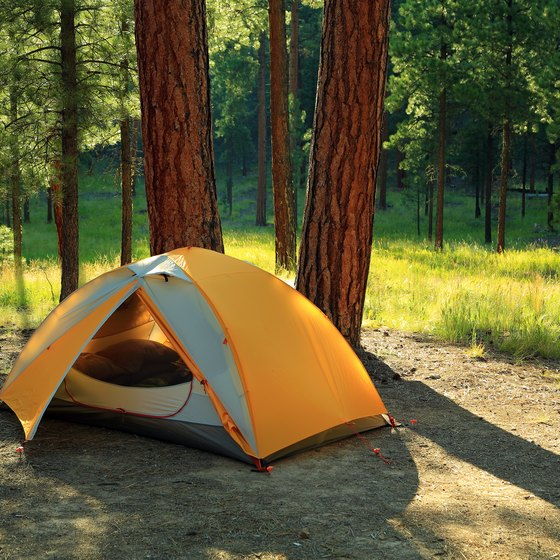 Free Tent Camping in Eastern Kentucky   USA Today