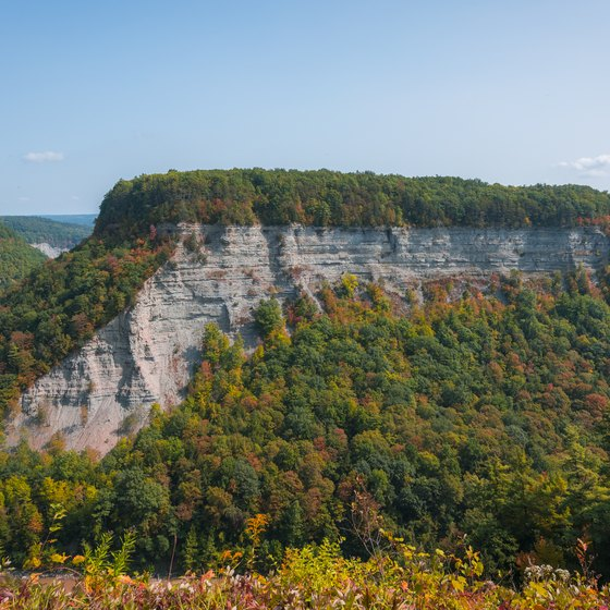Activities in Letchworth State Park