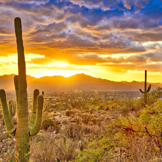Warm Places To Travel Usa