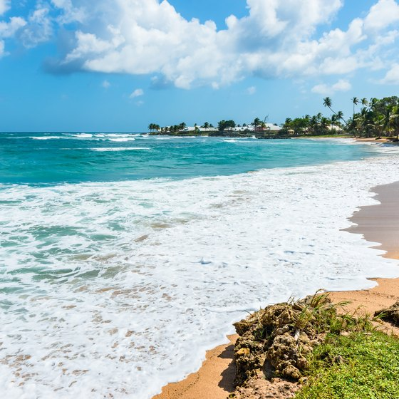 Tobago Island: Trinidad And Tobago Vacation