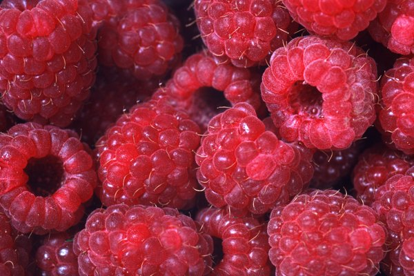 Raspberries, full frame