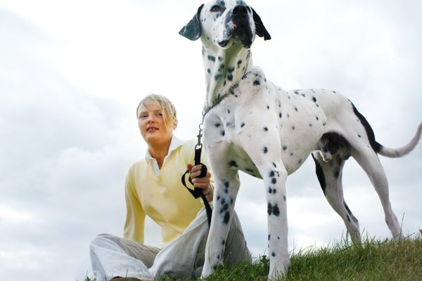 low angle view of a woman sitting in a field with her Dalmatian dog