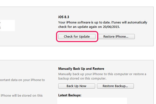 Select Check for Update to find out if the iPhone needs updating.