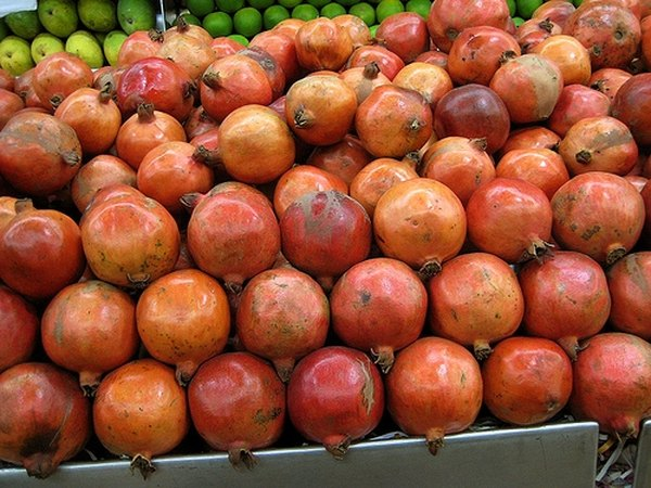 Pomegranates are commercially grown and harvested in California.