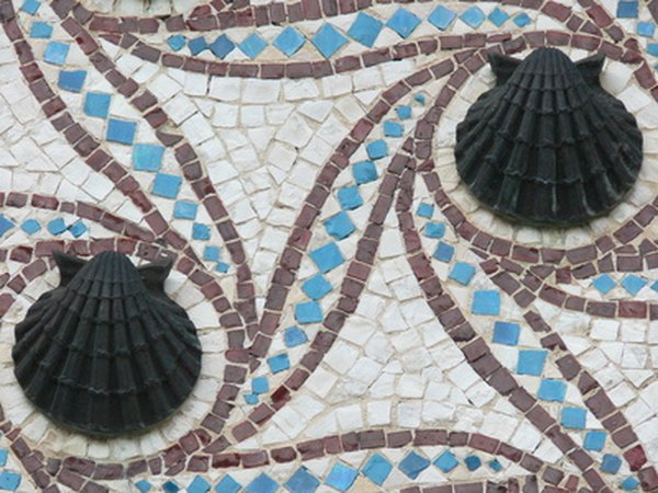 Incorporate shells into mosaic art projects.