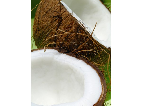 Coconut fat requires little digestion.