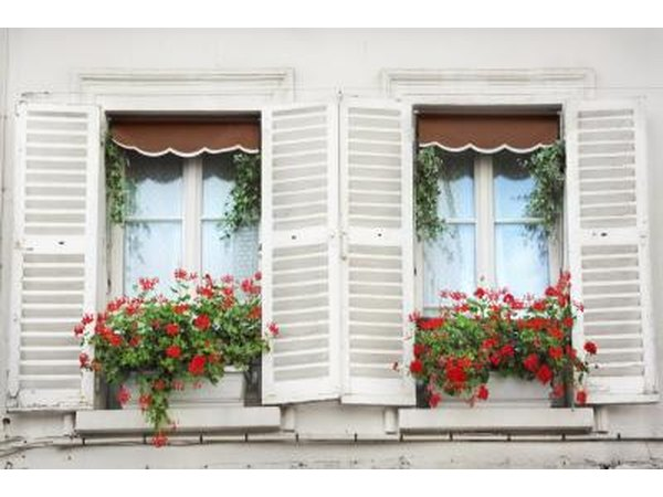 Flower boxes outside a window in Paris, France.