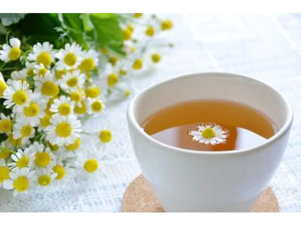 Chamomile flowers and tea.