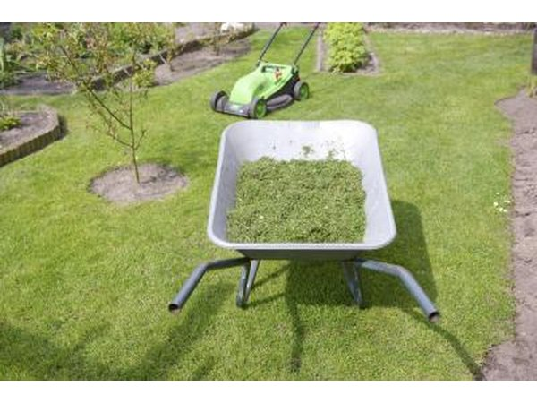 Grass clippings in a wheelbarrow, in front of a lawn mower