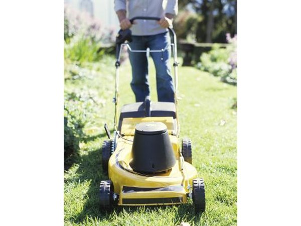 Use rotary mowers and not reel-type mowers for St. Augustine grass.
