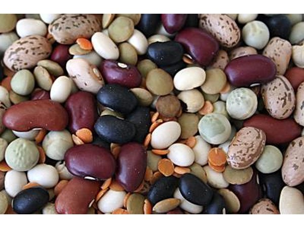 Dried beans should be watered regularly enough to keep the soil moist around them.