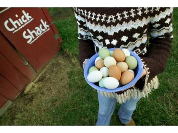 Woman carrying bowl of eggs