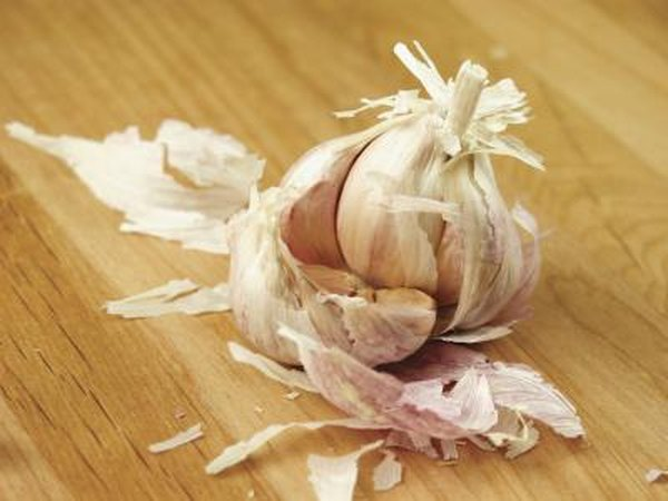 Garlic has strong anti-bacterial properties and is a natural antibiotic for infections.