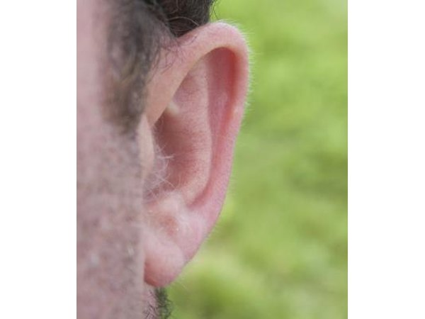 Man's long earlobe.