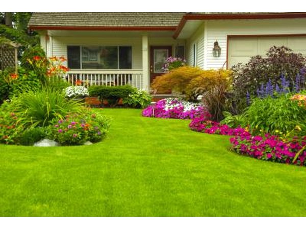 If you have a large yard, you may want an edger that has a little added horsepower.
