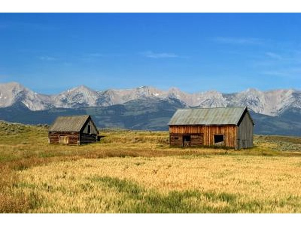 Wood Mountain Elevation : Tick fever in humans with pictures ehow