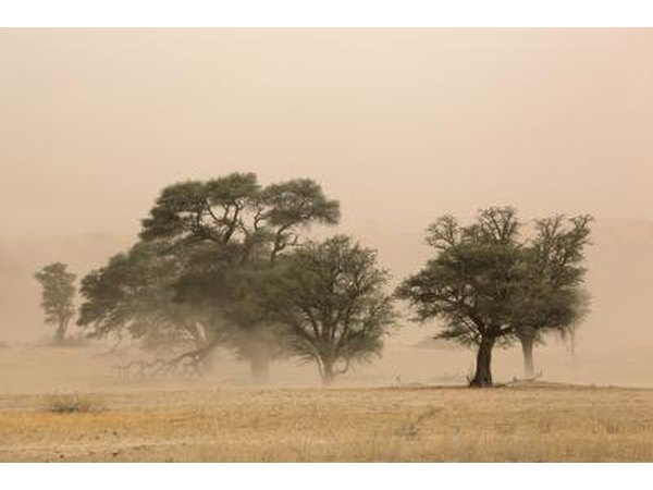 Severe dust storm in the Kalahari Desert, South Africa