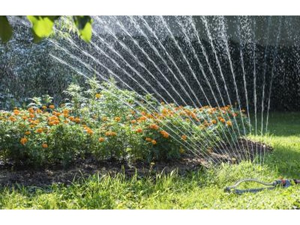 Sprinkler system shooting water at plants