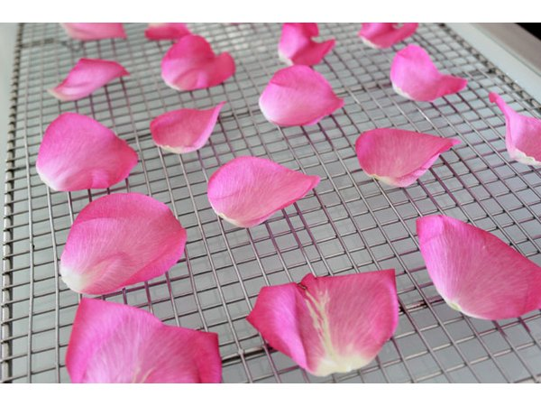 Air dry rose petals on a wire rack
