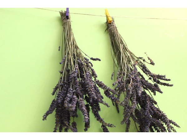 Dry the lavender upside down.