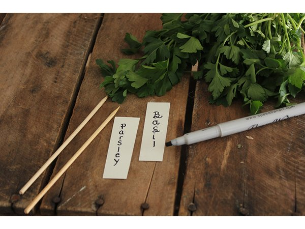 Create herb labels.