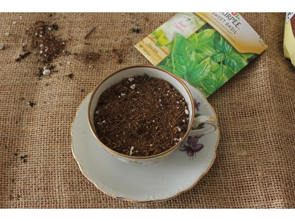 Cover herb seeds with soil.