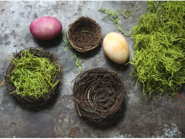 Find faux bird nests and moss at your local craft store.
