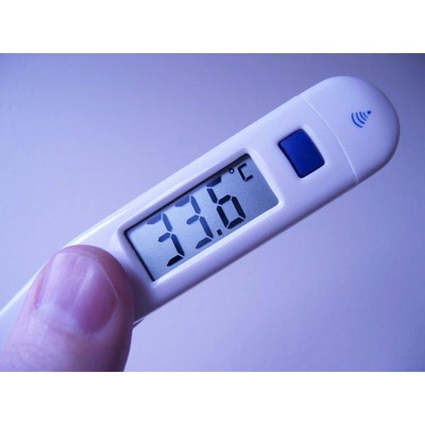 bd rapid flex digital thermometer instructions