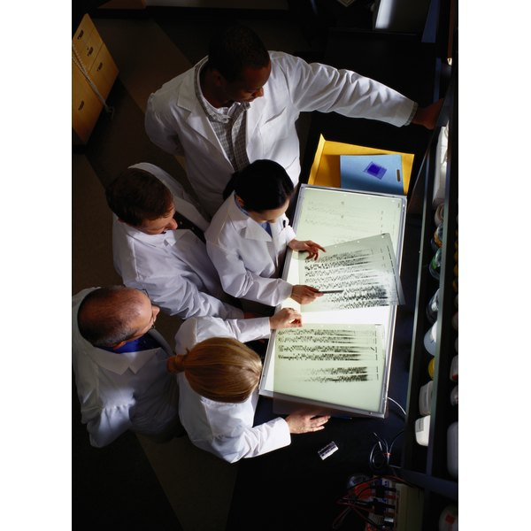 Group of Technicians Looking at Transparencies