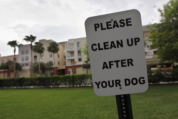 Picking up feces reduces the risk of your dog ingesting parasites of viruses.