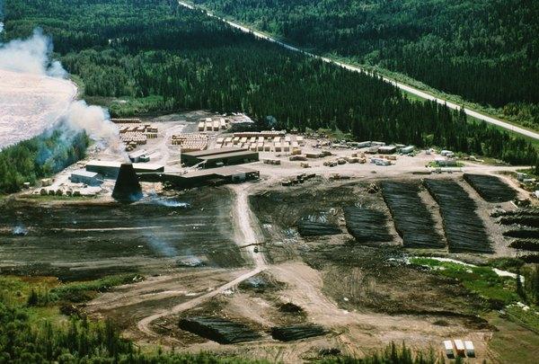 Deforestation help!!!?