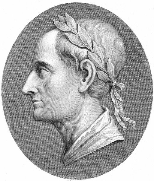 an analysis of aeneas as the roman hero in the aeneid an epic poem by virgil Essay about comparing the aeneid and and virgil's the aeneid the hero of each story travels to the the aeneid is an epic poem written in 12 books and is.