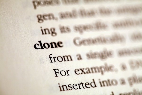 Why Cloning Is Inhuman: An Essay | Teen Hot Topic Essay