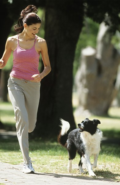 A dog with hip dysplasia may shy away from exercise.