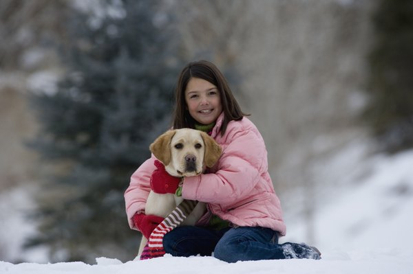 Exposure to cold temperatures may cause your dog to develop hives.