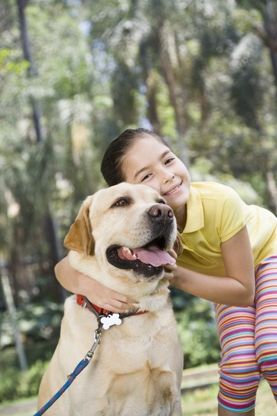 Bigger dogs are more likely to develop osteosarcoma.