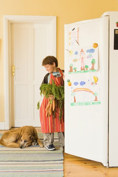 Dog + extra carrots + family time = one very happy pooch!