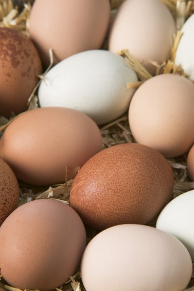 Eggs provide a good source of protein and amino acids.