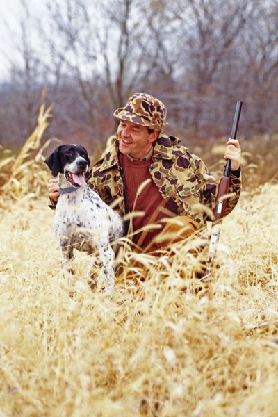 Hunting and sporting dogs have an increased risk for blastomycosis.