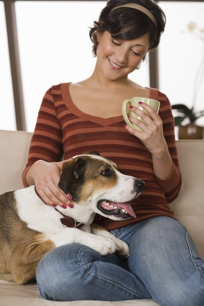 Best keep that coffee away from your dog.