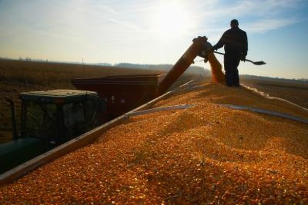 Farmers can buy futures to lock in prices on the commodities they produce.