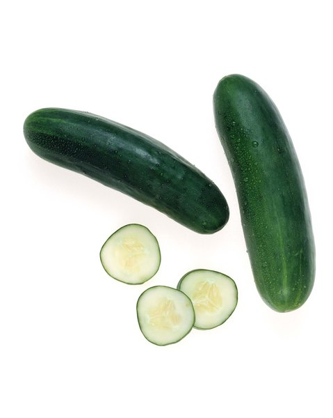 Don't worry, cucumbers aren't poisonous to your fluffy buddy.